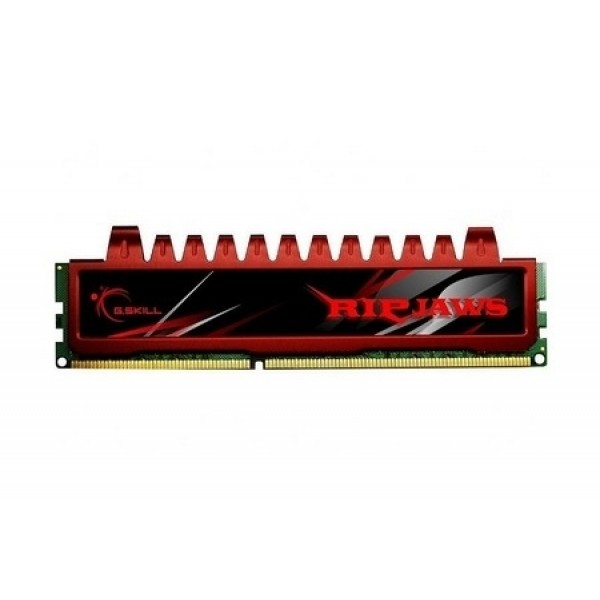 G.Skill Ripjaws 4GB (1x4) DDR3-1066