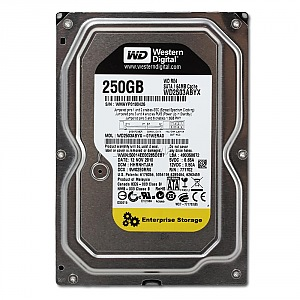 Western Digital RE4 250GB